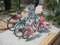 自転車たち.JPG