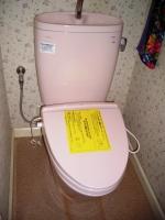 新トイレ完成.JPG