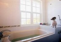 300八丁ペット用風呂つき風呂.jpg