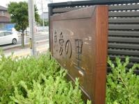 CIMG0913.JPG